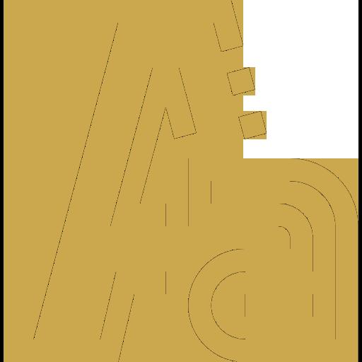 Diensten Logo en huisstijl icoon goud